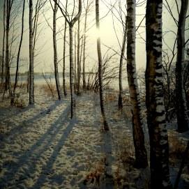 zima-w-modrej-8