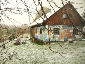 modra zima
